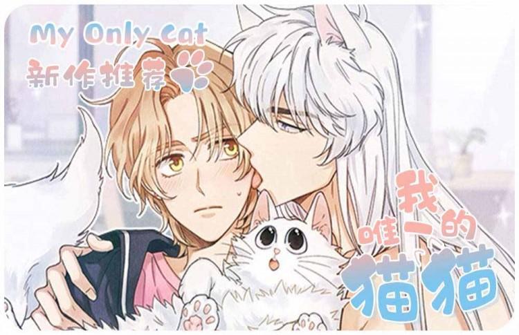 嗨漫驿站《我唯一的猫猫》百度云资源免费阅读韩漫耽美漫画 第二话